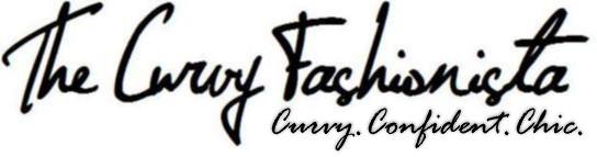 The Curvy Fashionista Sponsors Plus Academy Bay Area